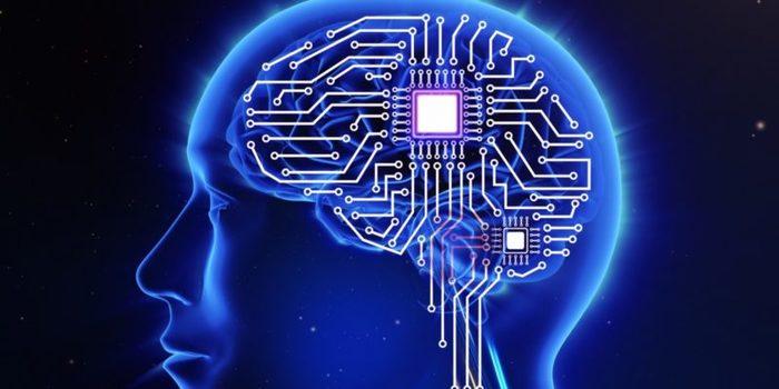 chip_cerebro