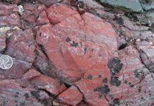 Aparece en Quebec el fósil más antiguo del planeta Tierra