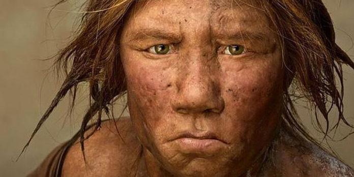 Los neandertales asturianos seguían una dieta vegana