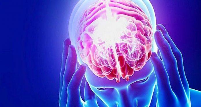salud de tu cerebro