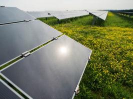 Shell energía solar