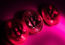 Bitcoin criptomonedas