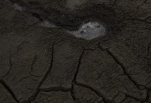 El carbón y la sequía