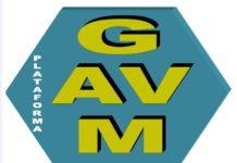 Foto de Logo GAVM