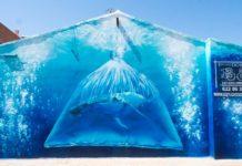 Foto de Contaminación Plásticos