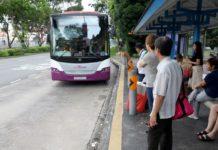 transporte discrecional