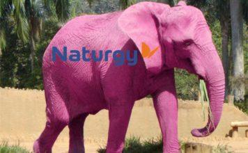 Naturgy-elefante-rosa