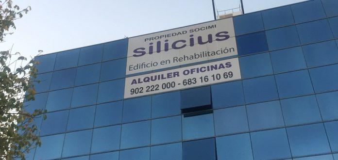 Silicius