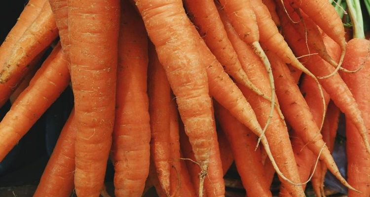 Origen de las zanahorias