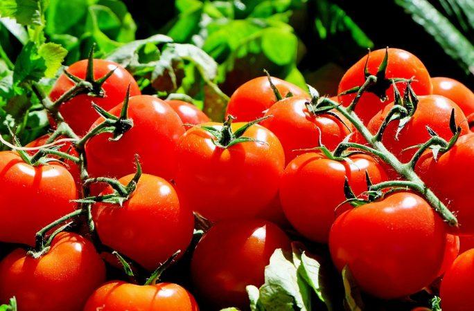 tomate frito colesterol