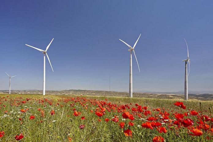 Acciona España renovables