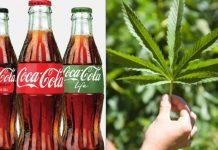 Coca cola quiere sacar una bebida con cannabis
