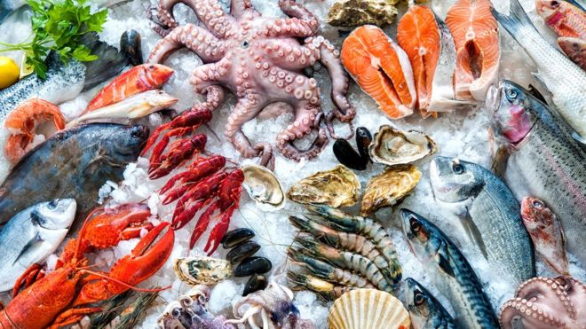 Hay pescados que tienen mucho mercurio en su organismo