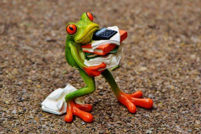 rana con trabajo