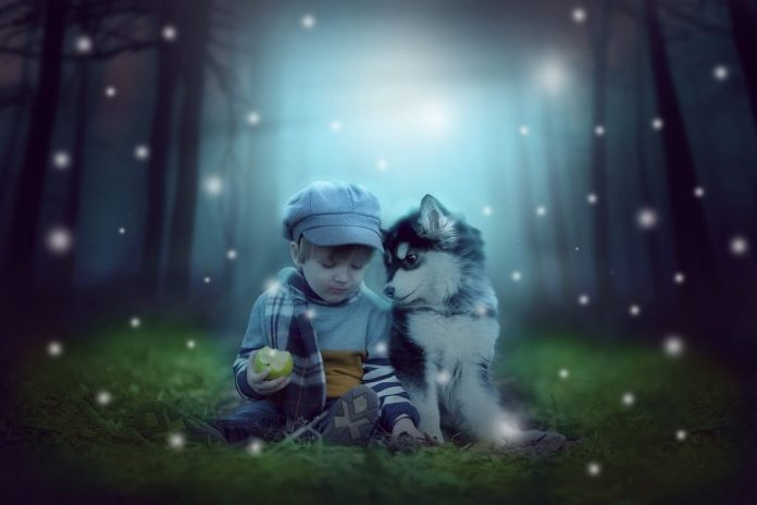 perros ayudan niños hospitales