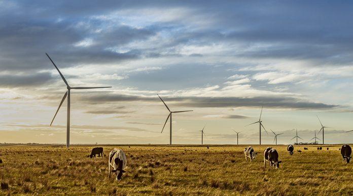 Acciona parque eólico Australia