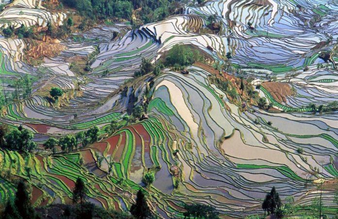 condados raros, lugares de yuanyang