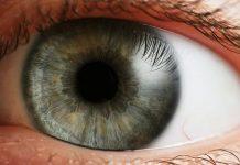 cáncer ojo