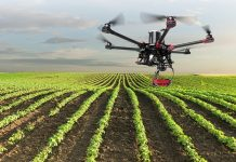 agricultura-ganaderia-covid-19