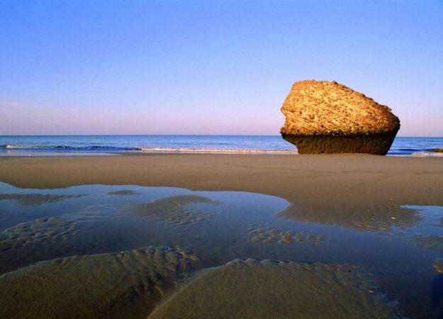 vacaciones playa matalascañas