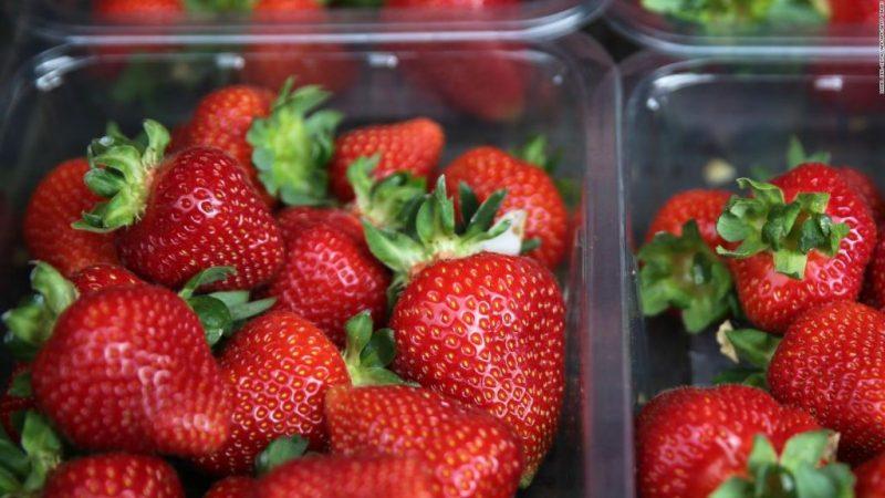 Contaminación en las fresas