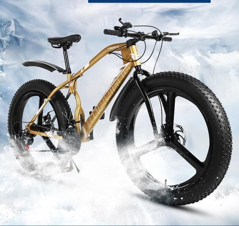bicicleta nieve