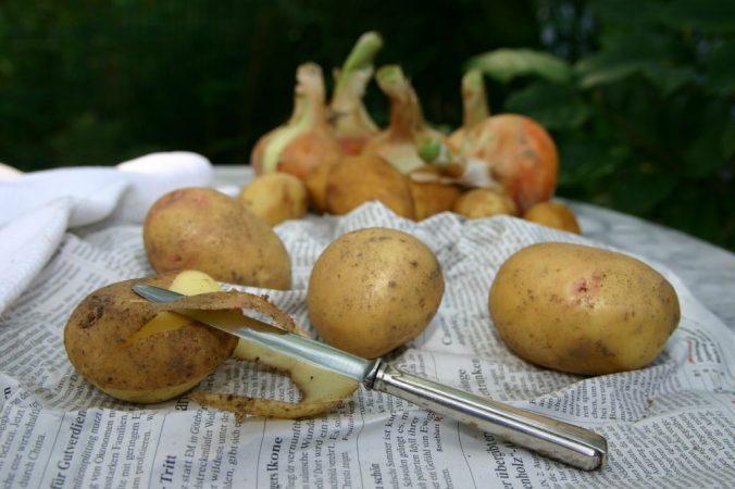 ingredientes recetas de patatas