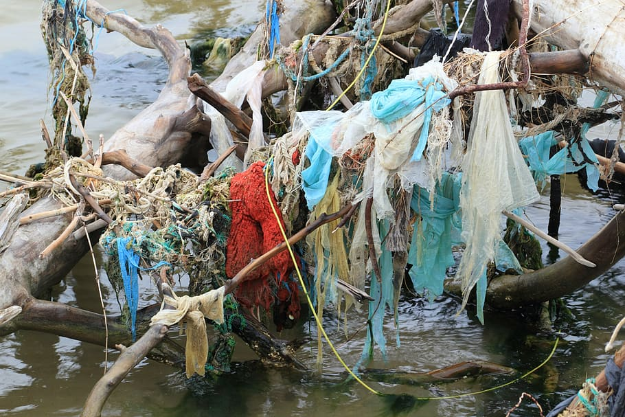 plásticos, contaminación