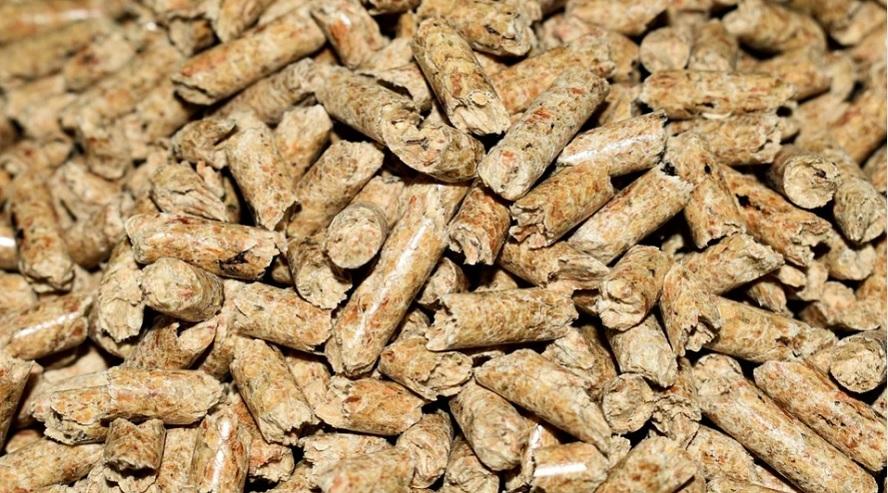 La biomasa podría abastecer de energía a España en diciembre
