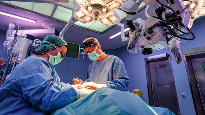 Los mejores médicos de España 2020: Cirugía plástica, estética y reparadora