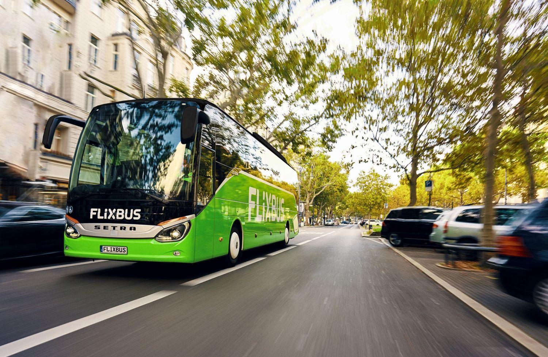 FlixBus pondrá en circulación más de 500 mil asientos este verano