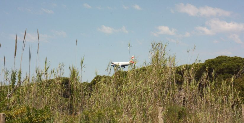 Una avión, en pleno aterrizaje sobrevuela La Ricarda. AJM
