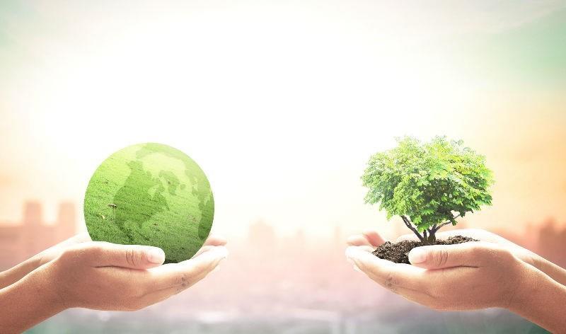 Vanguard podría perder la gestión de 2,55 billones de euros hasta 2050 debido al cambio climático