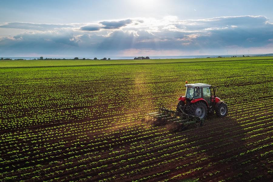 Ebro Foods Valley: el ejemplo para solucionar la digitalización agroalimentaria