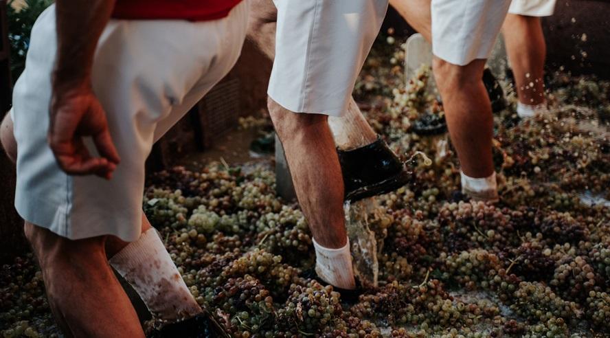 La 'Fiesta de la vendimia' en Jérez: el enoturismo en estado puro