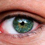 Esta es la hortaliza que ayuda a mejorar la vista