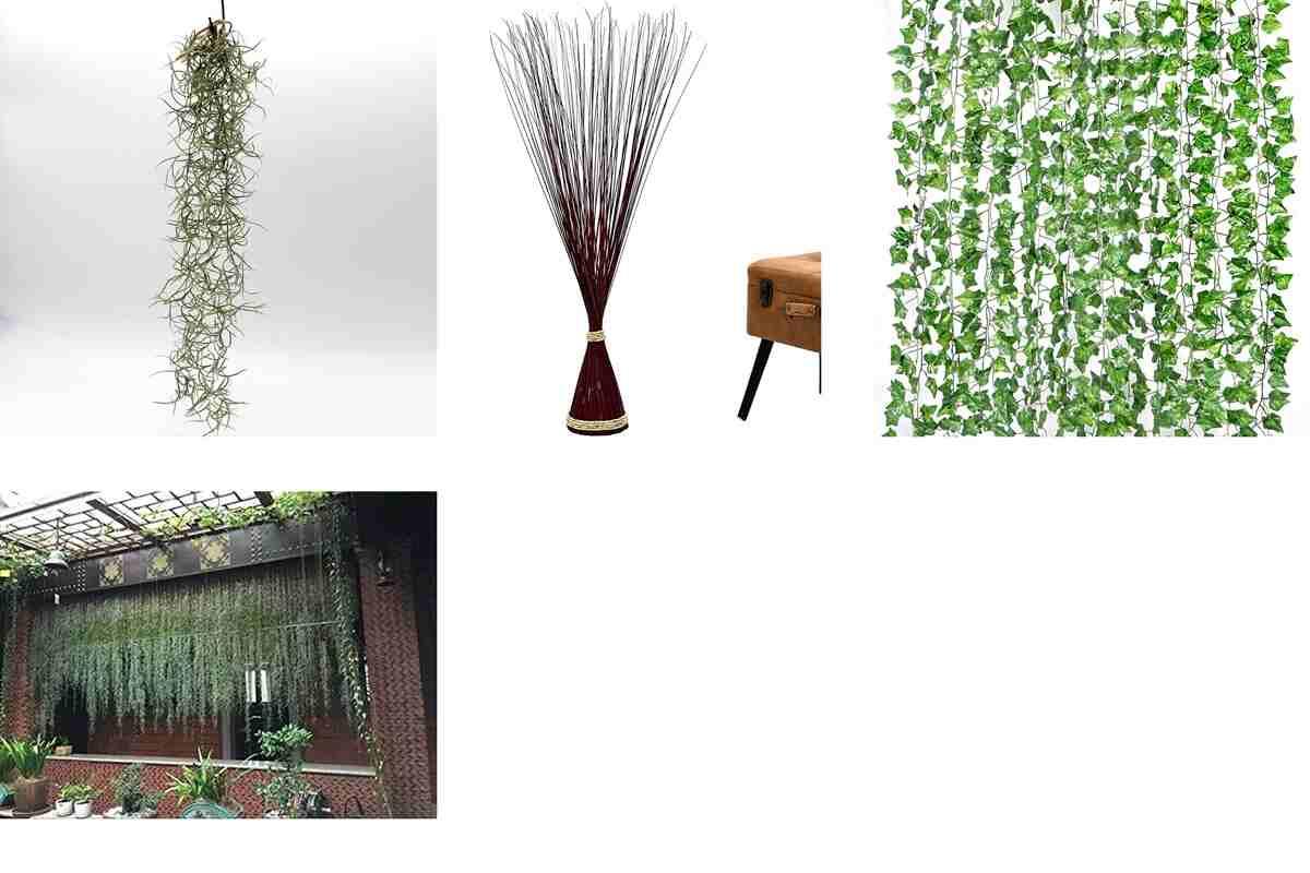 Amazon: 10 plantas muy exóticas para decorar tu hogar al estilo urban jungle